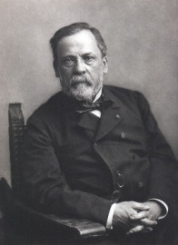 How to pronounce Louis Pasteur - Photo by Nadar