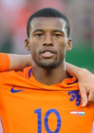 How to pronounce Georginio Wijnaldum - Photo by Ailura